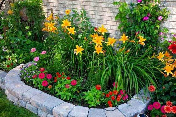 backyard flowers ideas feature