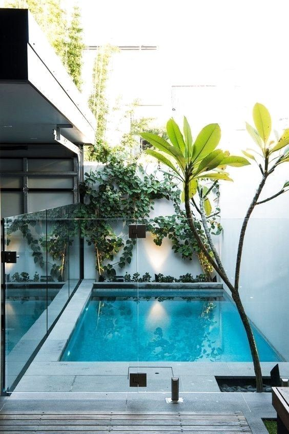 Small Swimming Pool Ideas: Sun Exposure
