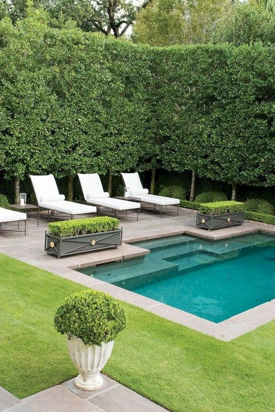 Swimming Pool Ideas: Simple Small Pool