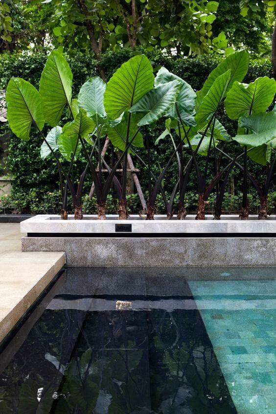 swimming pool tiles ideas 13