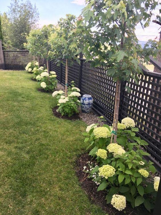 backyard fence 11