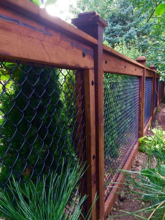backyard fence 6