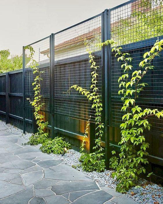 backyard fence 7
