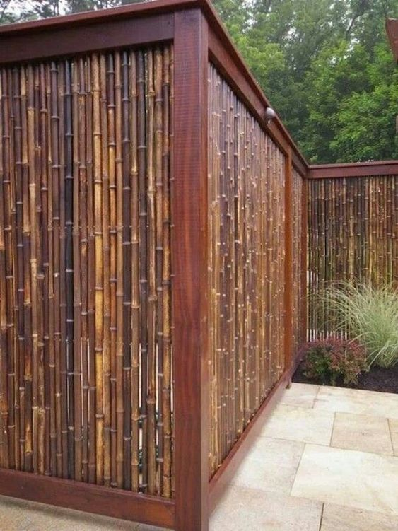 bamboo fence 17
