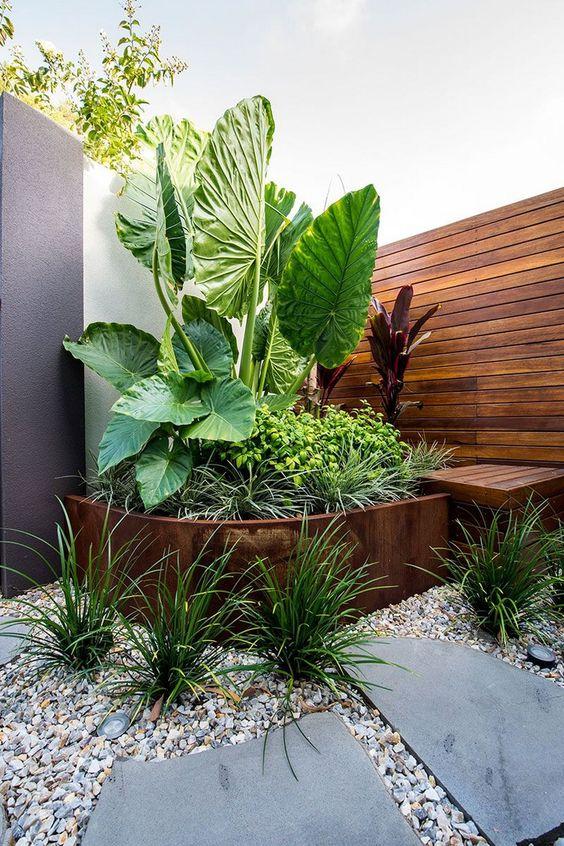 tropical backyard ideas 10