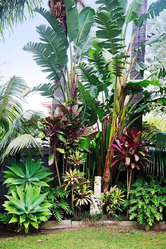 tropical backyard ideas 12