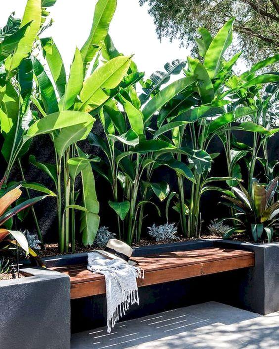 tropical backyard ideas 17