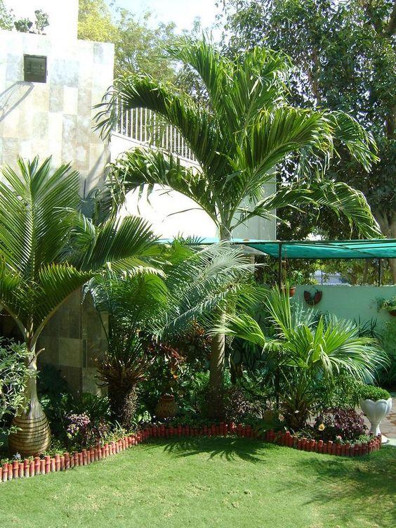 Tropical Backyard Ideas: Tropical Corner
