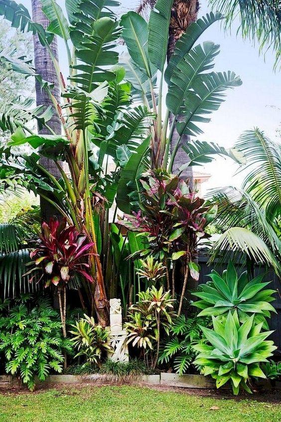 tropical backyard ideas 4