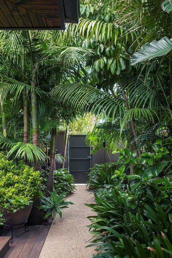 tropical backyard ideas 6