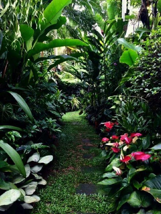 tropical backyard ideas 7