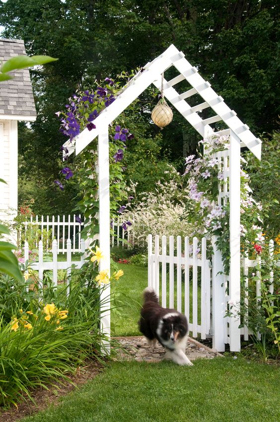 White Fence: Lovely White Gate