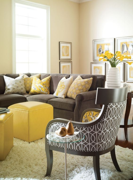 living room brown ideas 6