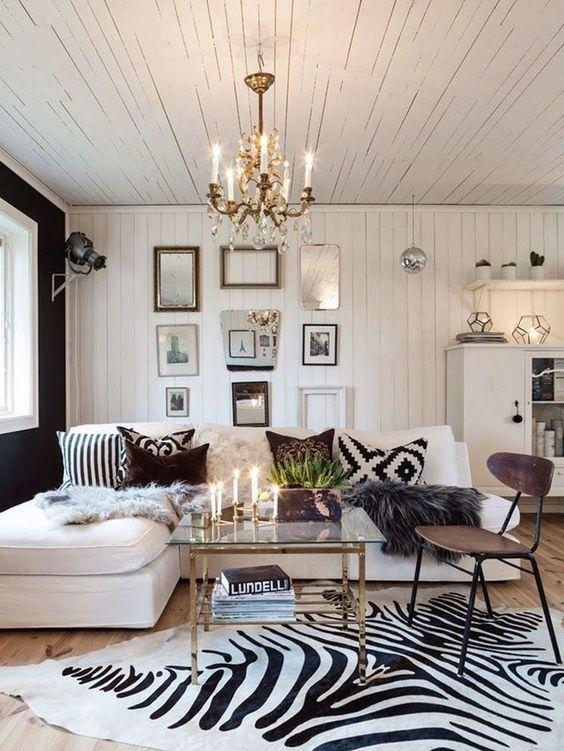 Living Room Rug Ideas: Zebra Print Rug