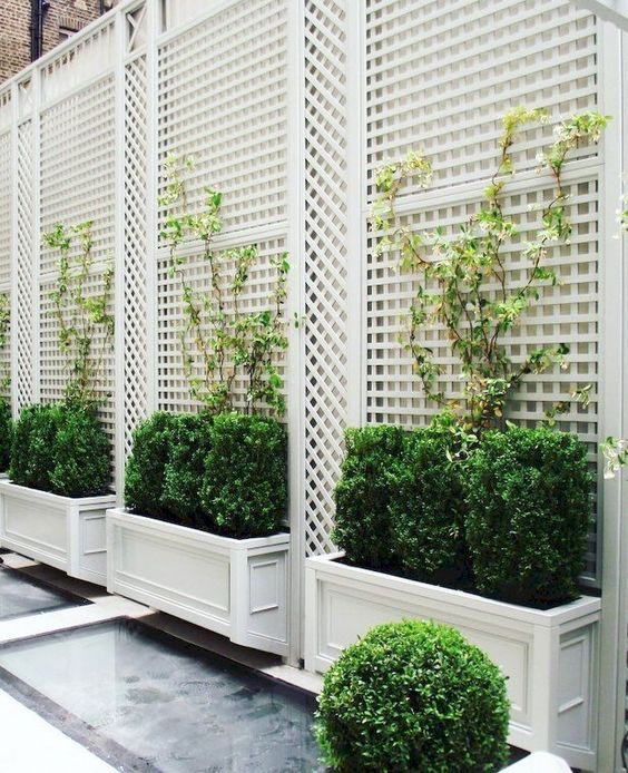 Privacy Fence: Stunning White Fence