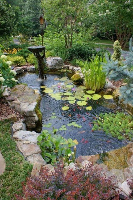 Backyard Decor Ideas 10
