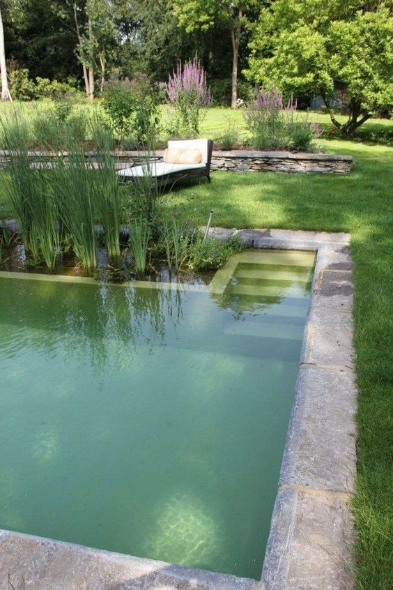 Natural Swimming Pool Ideas: Classic Rectangle Shape