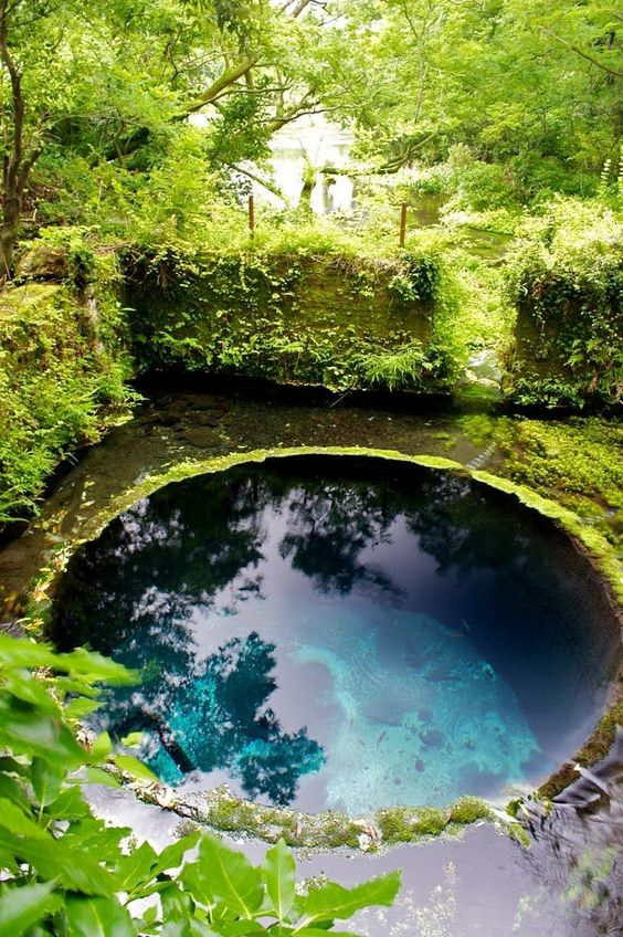 Natural Swimming Pool Ideas: Round Plunge Pool