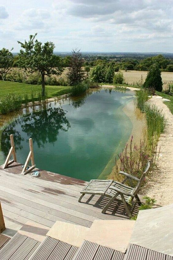 Natural Swimming Pool Ideas: Fresh Looking View