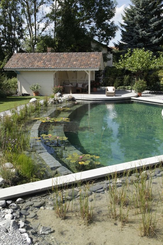Natural Swimming Pool Ideas: Simple Natural Pool
