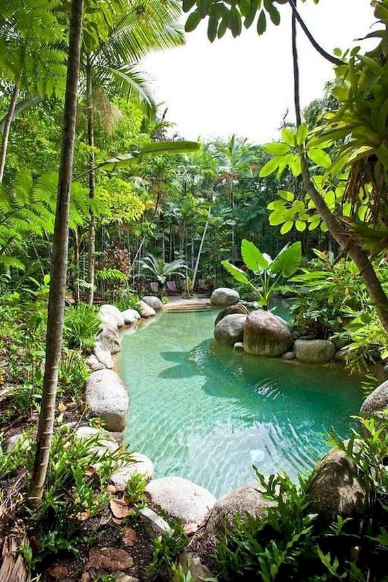 Natural Swimming Pool Ideas: Natural Infinity Pool