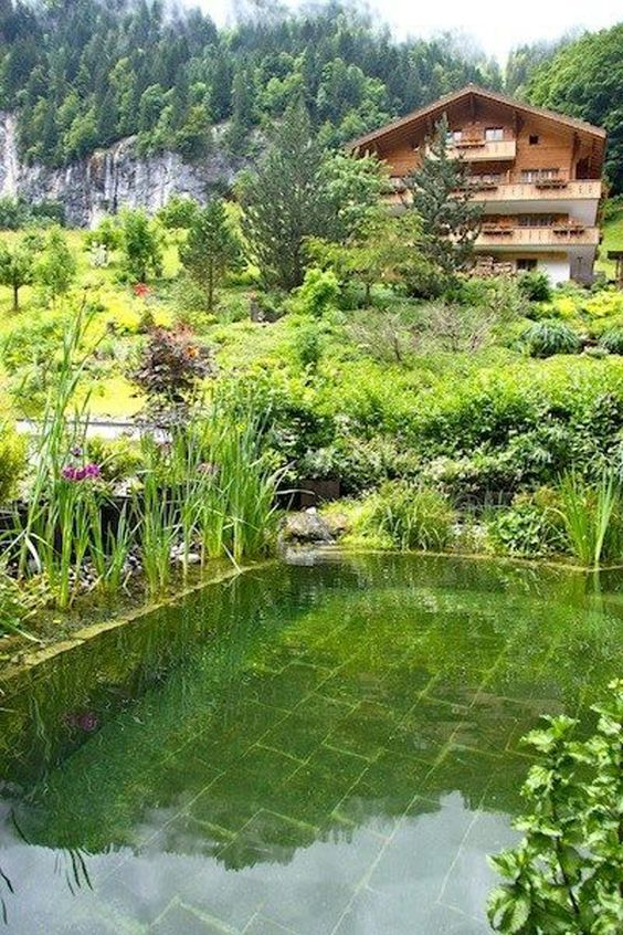 Natural Swimming Pool Ideas: Mesmerizing Natural Green