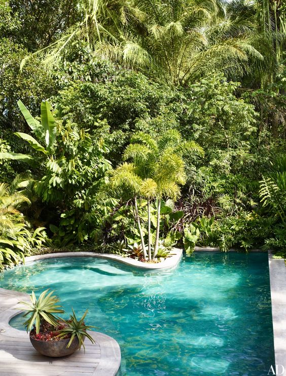 Swimming Pool Garden Ideas 12