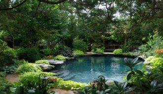 Swimming Pool Garden Ideas