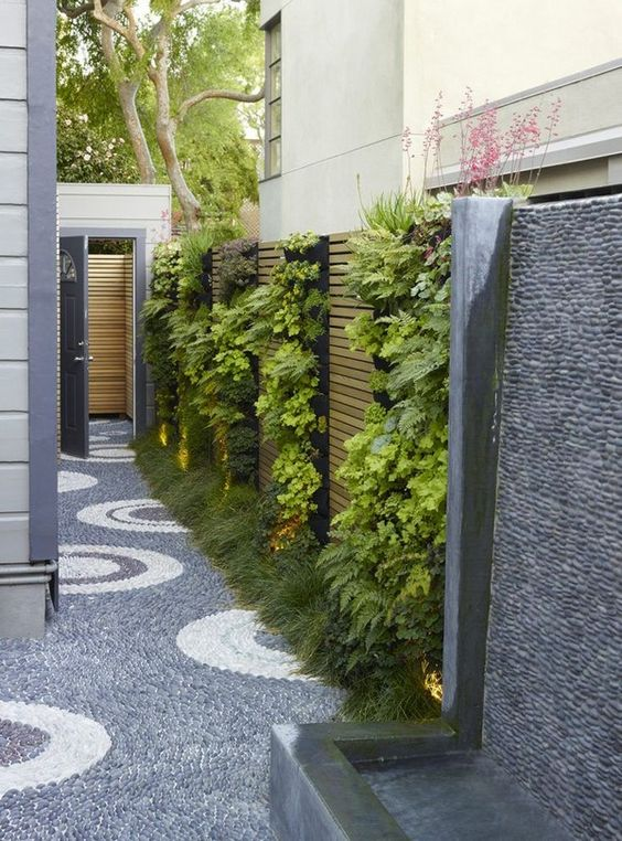 Backyard Wall Ideas: Fresh Vertical Garden