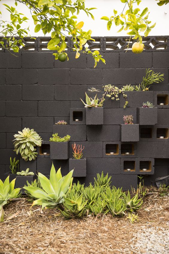 Backyard Wall Ideas: Captivating 3D Concept