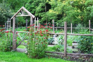 Rustic Fence Ideas
