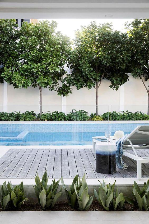 Swimming Pool Landscaping Ideas: Stylish Modern Layout