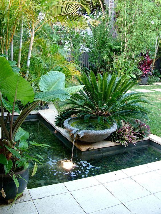 Backyard Pond Ideas: Fresh Tropical Look