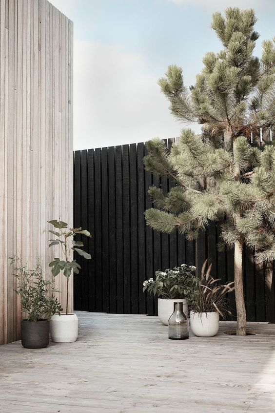 Black Fence Ideas: Chic Simple Fence