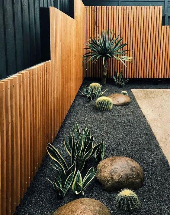 Fence Landscaping Ideas: Unique Cactus Decor