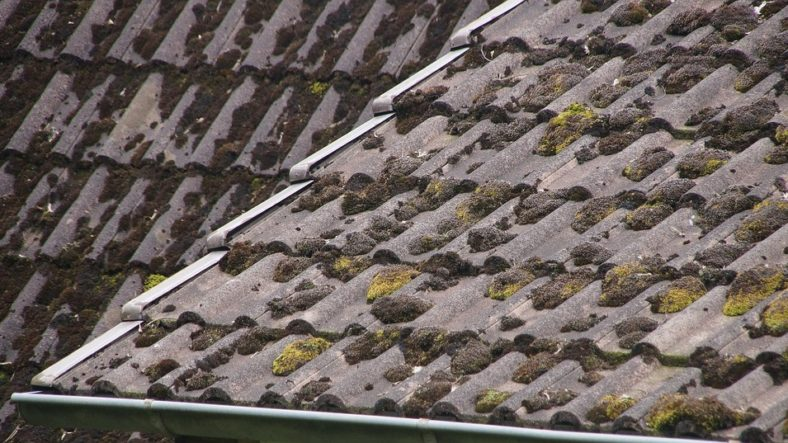Five Signs You Might Need a Roof Replacement
