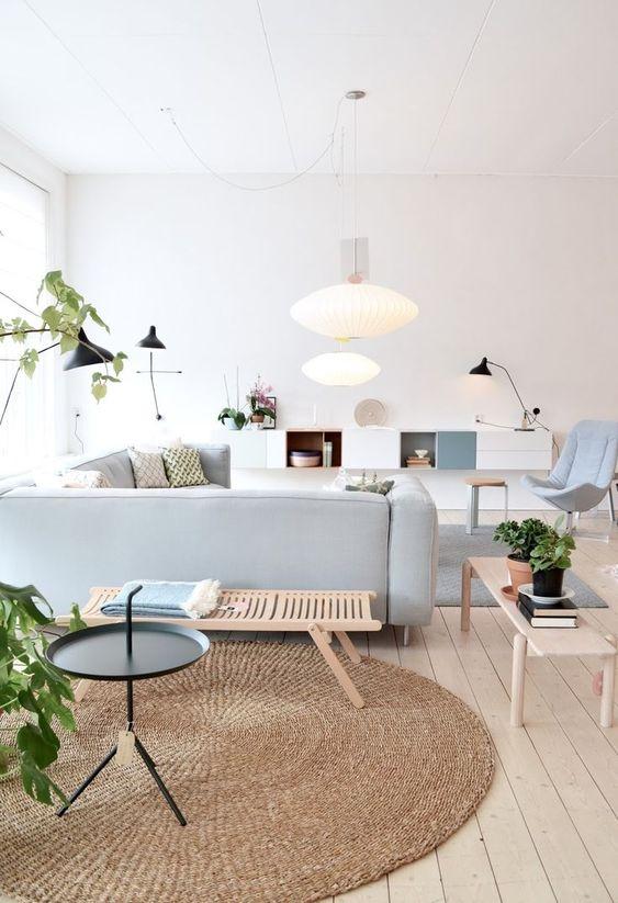 Cozy Living Room Ideas 3