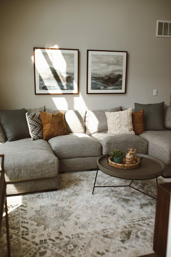 Cozy Living Room Ideas 4